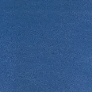Seni FR Blue