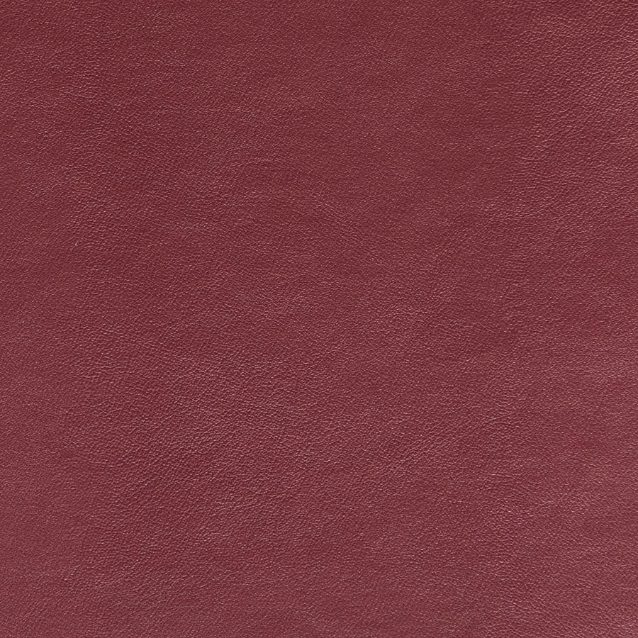 Seni-FR-Bordeaux-59-042
