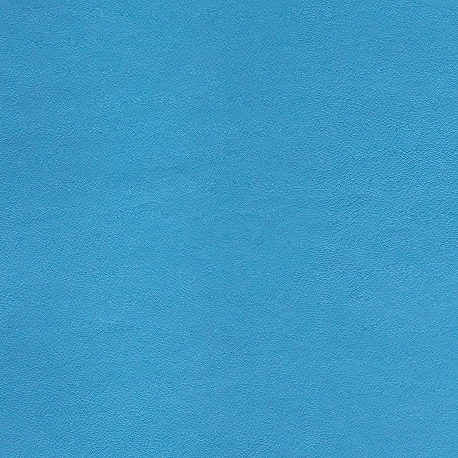 Seni-FR-Dolphin-59-702