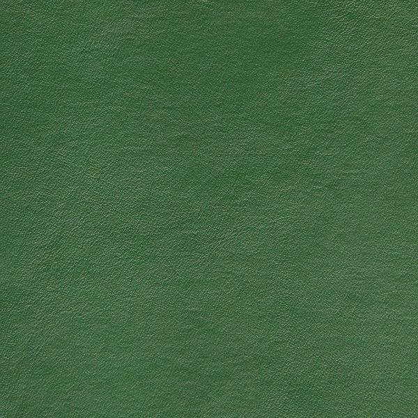 Seni-FR-Forest-59-027