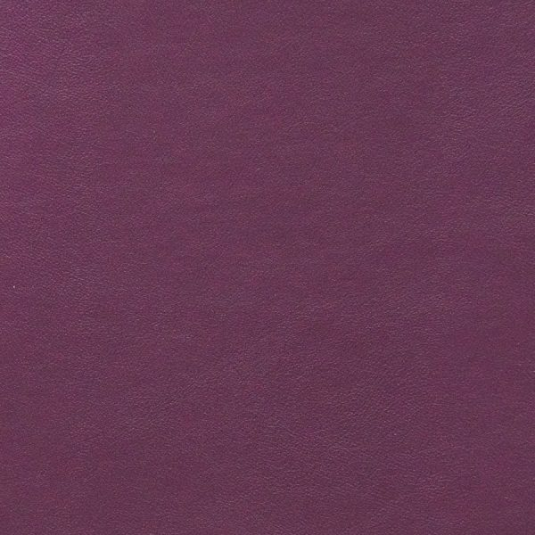 Seni-FR-Orchidee-59-726