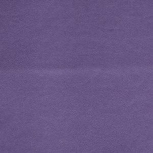 Seni FR Violett