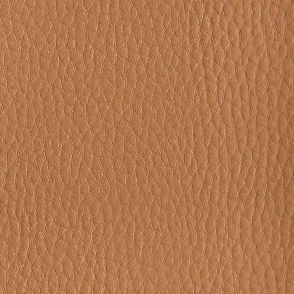 Bombay-Camel-2124