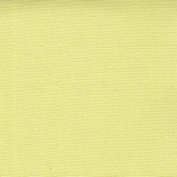 Agora-Lisos-Limon-3935