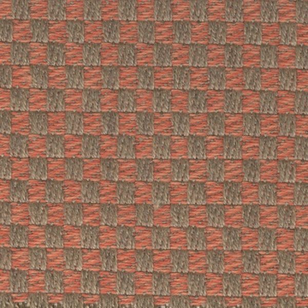 Agora-Senda-Coral-1038
