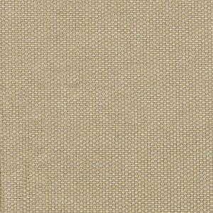 Acrisol PANAMA Canela-42 – 155 Cm