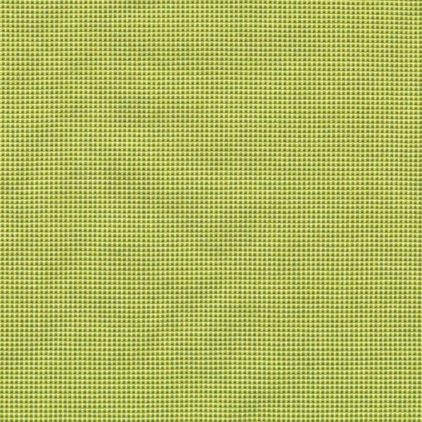 Acrisol-Spark-Avocado-302