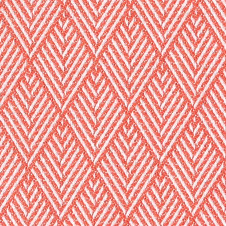 Agora-Picco-Coral-1425