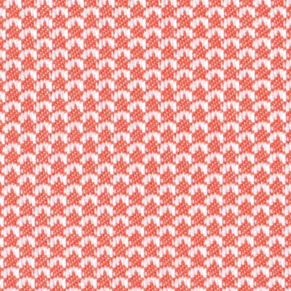 Agora-Scala-Coral-1432