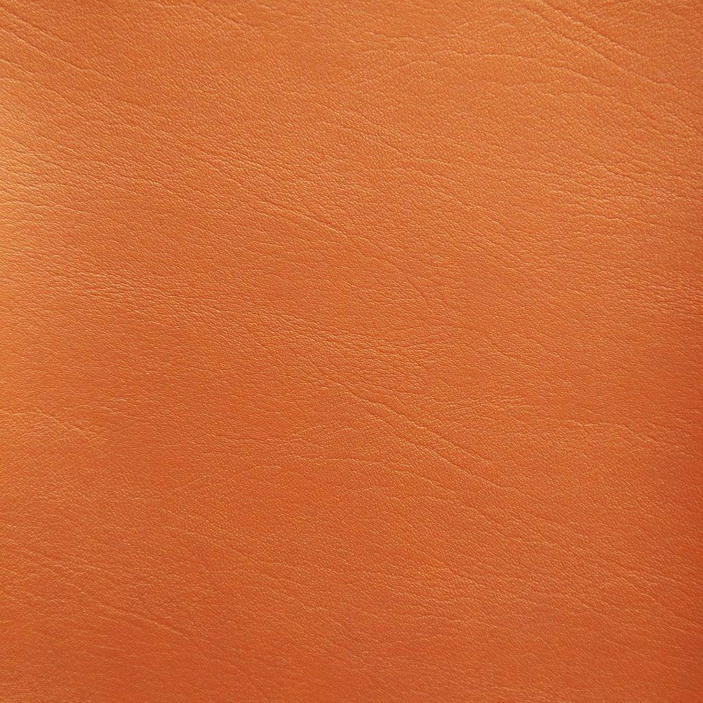 Posh-FR-Orange-24-11