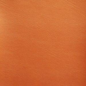 Posh FR Orange