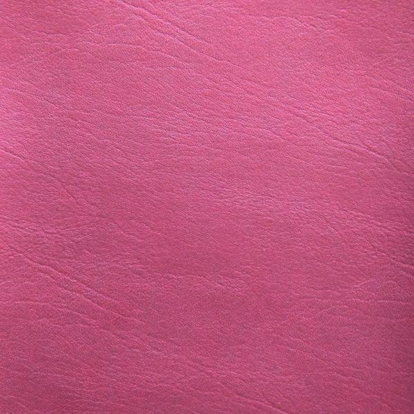 Posh-FR-Raspberry-24-13